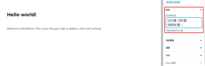 Wordpress设置标签