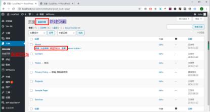 Wordpres是编辑页面